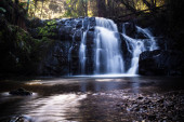A long expsore of the Beautiful Lilydale falls shot early in the morning.  This waterfall is located in Tasmania, Australia.