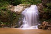 Waterfall summer forest