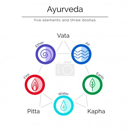 Illustration for Ayurvedic vector illustration in flat style. Ayurvedic elements. Ayurvedic body types and symbols in linear style. Ayurveda as alternative indian medicine. - Royalty Free Image
