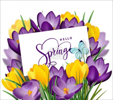 Greeting card with bouquet of spring flowers crocuses in the envelope.Vector template.