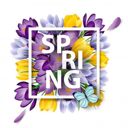 Illustration for Spring background with blooming spring flowers, crocuses. Vector illustration - Royalty Free Image
