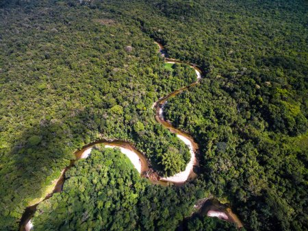 Top View of River in Rainforest, Brazil...