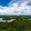 Aerial Shot of Amazon rainforest in Brazil, South ...