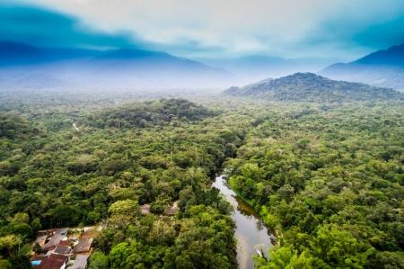 Aerial View of Amazon Rainforest, South America...