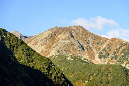 Photo pour Montagnes carpates slovaques. sommets ensoleillés en été au lever du soleil. belle journée pour la randonnée - image libre de droit