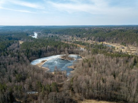 drone image. aerial view of forest river in spring. Gauja, Latvi
