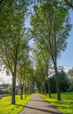 Photo pour Paysage d'été avec le parc de la ville verte à Amsterdam - image libre de droit