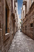 typical narrow street in the old Croatian city of Dubrovnik