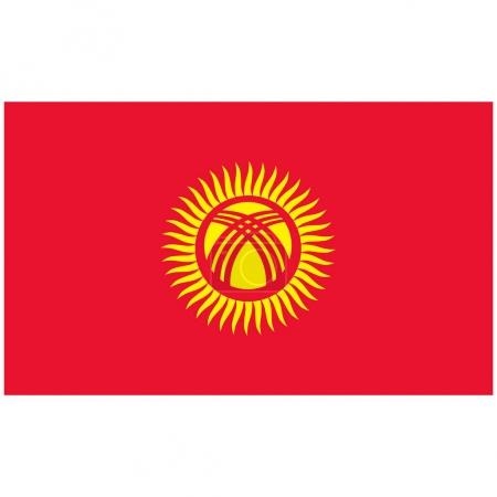 Kyrgyz raster flag