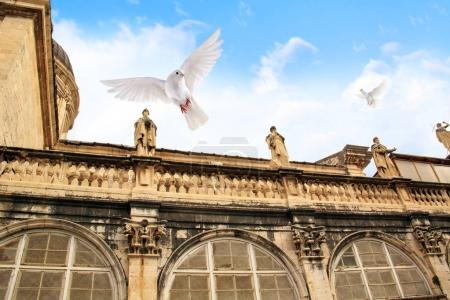 Sculptures on the roof of the cathedral and flying pigeons in the city of Dubrovnik, Croatia