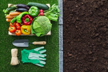 gardening tools and fertile soil, healthy food and agriculture concept