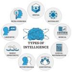 Types of intelligence outline symbols diagram, vec...