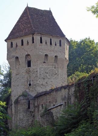 Photo pour La tour de Coaters Tin à Sighisoara, Roumanie - image libre de droit