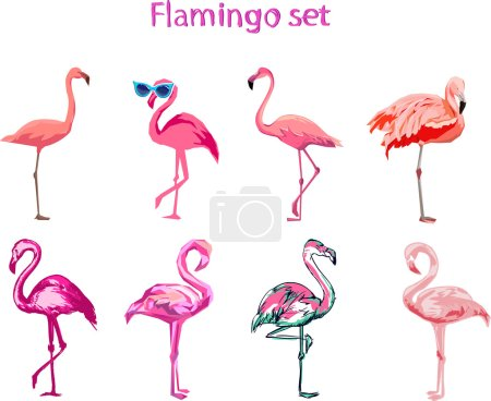 set of cartoon flamingos