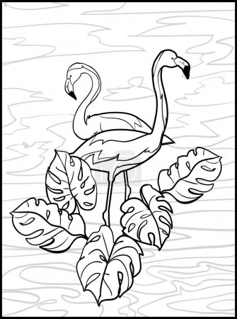 Sketch flamingos illustration
