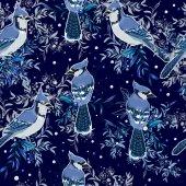 Blue Jay birds  Illustration