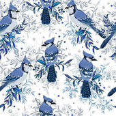 Blue Jay birds