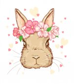 Cute Bunny with  hearts on white background