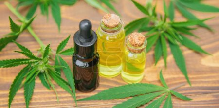 Photo pour Herbe de cannabis et feuilles pour bouillon de traitement, teinture, extrait, huile. Mise au point sélective. nature - image libre de droit
