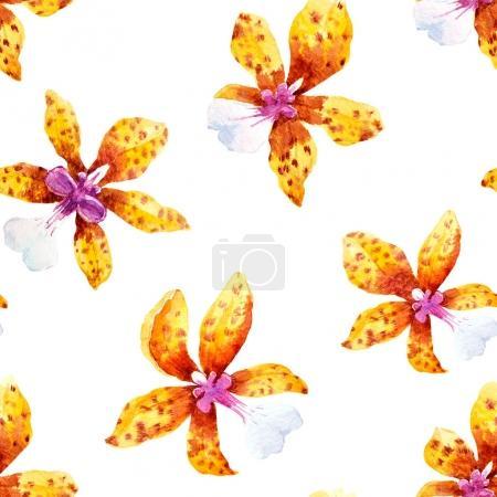 Foto de Patrón sin fisuras con acuarela flores orquídeas y hojas tropicales - Imagen libre de derechos