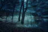 Brucher's dam in Marienheide by night. Fantasy Composing.