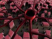 Cellule di fegato umane