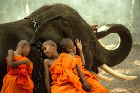 Photo for Novice Monks happiness with elephant - Royalty Free Image