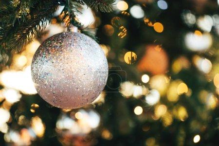 Christmas bauble on fir tree