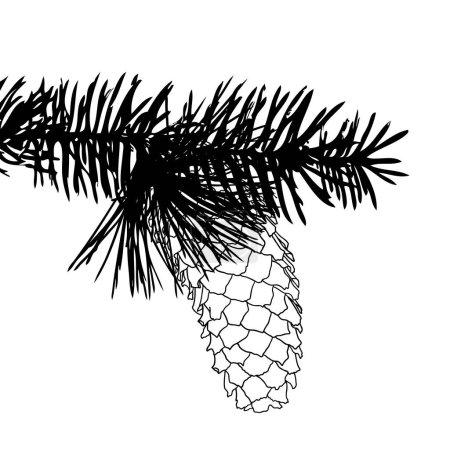 Pine cone hand drawn sketch