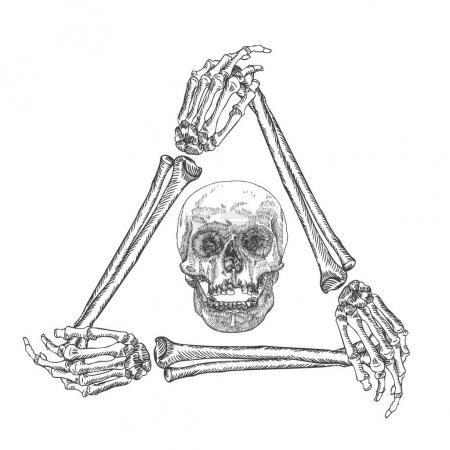 Skull in the frame of hands bones