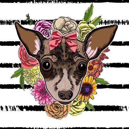 Portrait of Toy Terrier dog