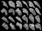 Set of hand drawn vintage etched woodcut angel or bird wings