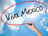 Woman Hand Writing Viva Mexico with black marker on visual scree