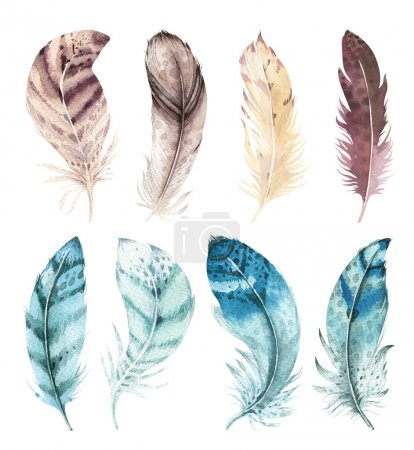 Hand drawn watercolor vibrant feather set. Boho style. illustration isolated on white. Bird fly feathers design for invitation, wedding card.Rustic feathers Bright colors.