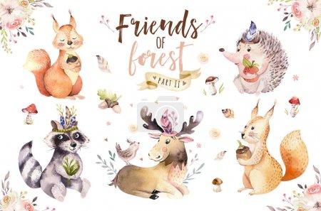 Photo pour Aquarelle mignonne avec des animaux dessinés à la main. Écureuils, hérissons, raton laveur, cerfs aux plantes et champignons - image libre de droit