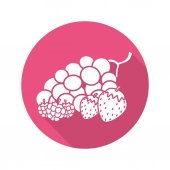Berries flat design long shadow icon Bunch of grapes raspberry strawberry Vector silhouette symbol