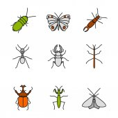 Insects color icons set Darkling and hercules beetles butterfly earwig stag bug phasmid moth ant mantis Isolated vector illustrations