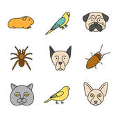 Pets color icons set Cavy budgerigar pug spider Doberman pinscher cockroach canary Canadian Sphynx british cat Isolated vector illustrations
