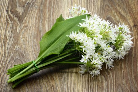 Photo for Bunch of ramson wild garlic flower heads and leaves on wooden table. - Royalty Free Image
