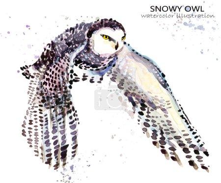 Snowy Owl watercolor illustration. Polar bird.