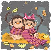 Two Monkeys in a scarf sitting in the rain