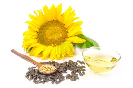Sunflower with oil and seeds on a white background
