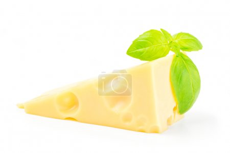Cheese and basil leaves isolated on white background cutout