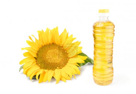 Sunflower oil and flower isolated on white