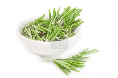 Photo for Fresh rosemary in a bowl isolated on white background cutout - Royalty Free Image