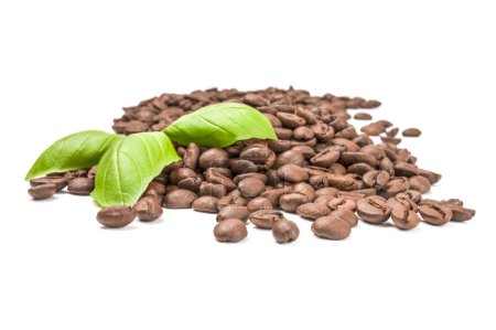 Brown coffee beans on a white background. Clipping path