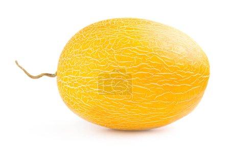 Photo pour Melon mûr isolé sur un fond blanc découpé - image libre de droit