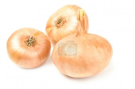 Ripe onion isolated on a white background with clipping path