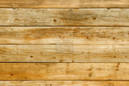 Natural pine wood background