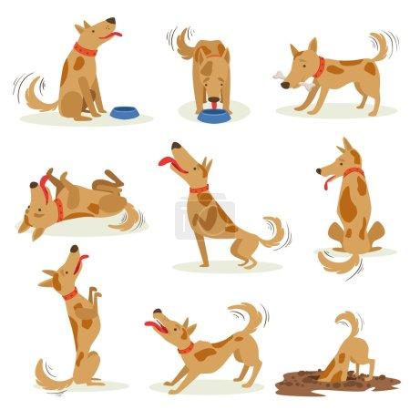 Illustration pour Ensemble de chien brun d'activités quotidiennes normales. Ensemble d'illustrations classiques de comportement de chien de compagnie dans le style mignon de carton isolé sur fond blanc . - image libre de droit